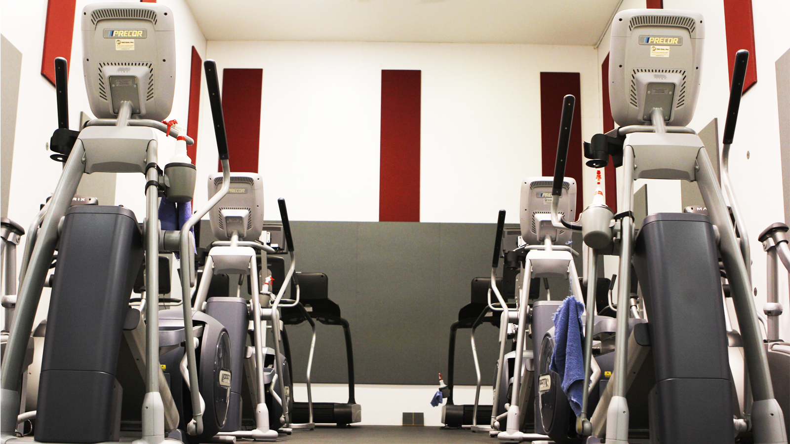 Elliptical machines in Cardio Zone